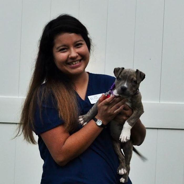 Cynthia<br>Veterinary Nurse  photo